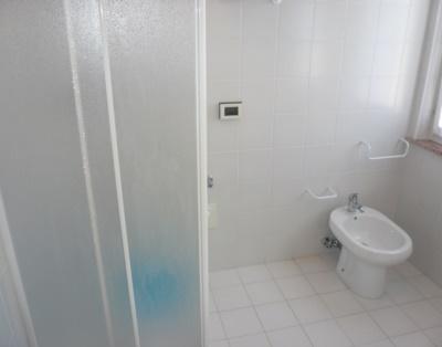 Ванная комната с двумя окнами и душем